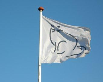 design dit eget flag